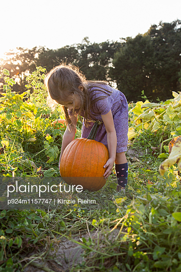 Young girl in pumpkin patch, lifting pumpkin - p924m1157747 by Kinzie Riehm