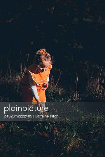 Toddler in orange-coloured dress playing on grassland - p1628m2222185 by Lorraine Fitch