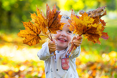 Happy little girl holding autumnal leaves - p300m2081533 by Wolfgang Weinhäupl