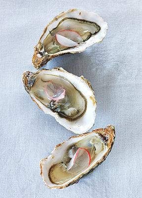 Oysters - p922m2071475 by Juliette Chretien