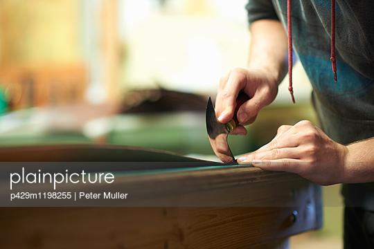 p429m1198255 von Peter Muller