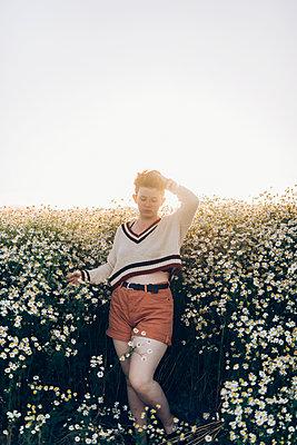 Field of Daisies - p1507m2100335 by Emma Grann