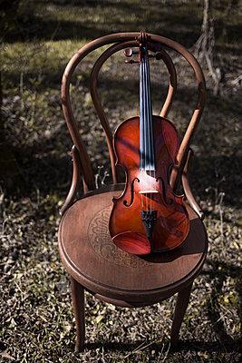 Violin - p1623m2214897 by Donatella Loi