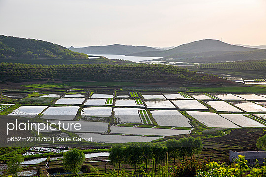 North Korea, North Pyongan Province. Rice fields irrigated by the Kaechon to Lake Taesong Waterway - p652m2214759 by Katie Garrod