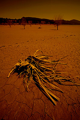 Dried lake, Aragon, Spain - p1028m2087278 by Jean Marmeisse