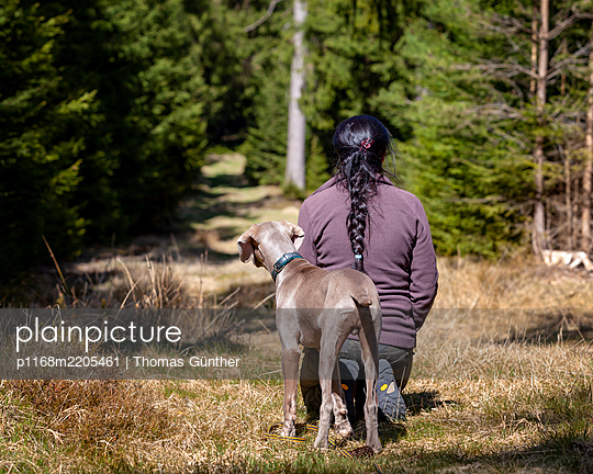 Woman with Weimaraner in the woods, hunting dog, training - p1168m2205461 by Thomas Günther