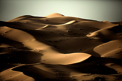 Desert landscape with sand dunes under a clear hazy sky. - p1100m1482276 by Mint Images