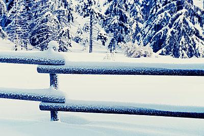 Germany, Lower Saxony, winter landscape in Harz - p300m948988 by Merle M.