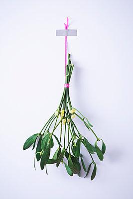 Mistletoes - p1149m1502280 by Yvonne Röder