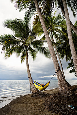 Man relaxing in hammock under palm trees in Costa Rica - p1166m2189662 by Cavan Images