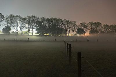 Nebel am Fluß - p497m903870 von Guntram Walter