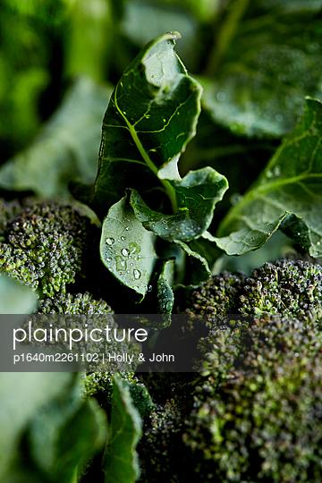 Fresh broccoli - p1640m2261102 by Holly & John