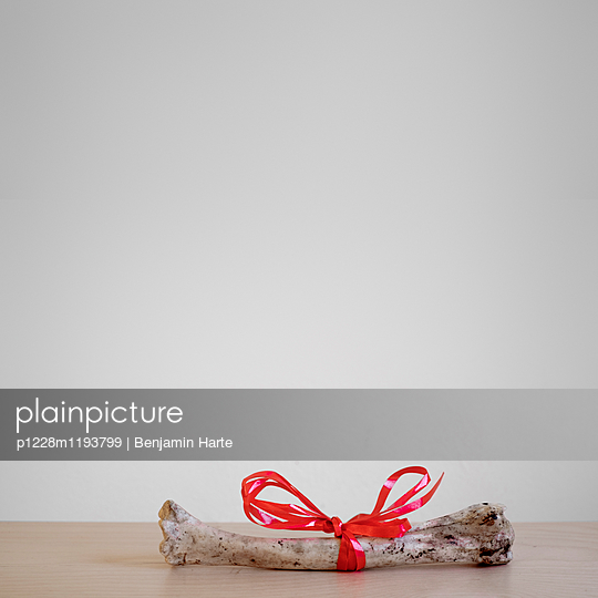 Bone with a red ribbon - p1228m1193799 by Benjamin Harte