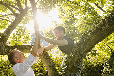 Happy son doing high-five to father while climbing on tree in back yard during sunny day - p300m2274962 by Gustafsson