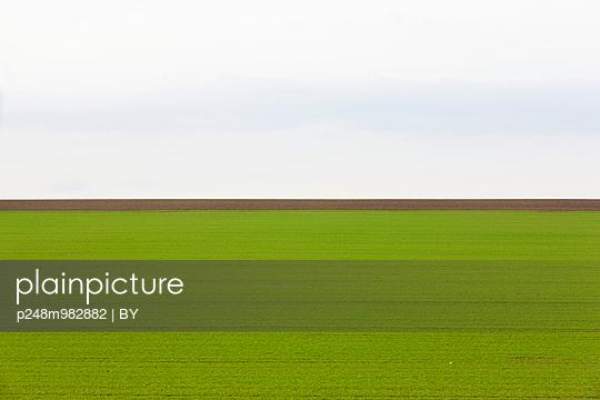 Acker und Felder - p248m982882 von BY