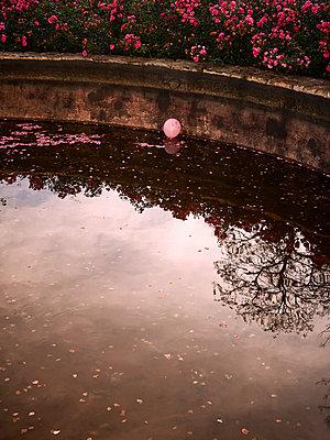 Luftballon im Teich - p900m1172492 von Michael Moser