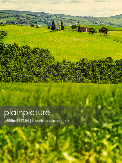 Tuscany landscape with rushes and shining su - p968m987194 by roberto pastrovicchio