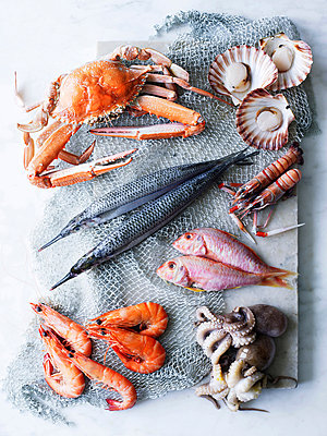 Selection of fresh seafood - p429m803460f by BRETT STEVENS