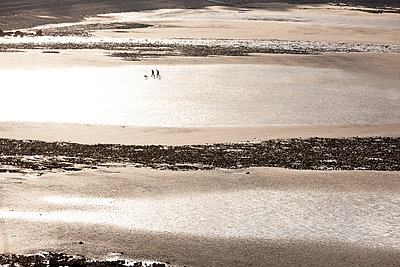 Beach walk - p248m989774 by BY
