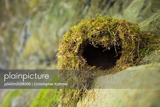p343m2038309 von Christopher Kimmel