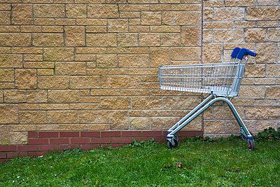 Forgotten shopping trolley - p1057m859454 by Stephen Shepherd