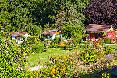 Germany, Esslingen, garden allotments with summer houses - p300m1166848 by Werner Dieterich
