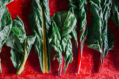 Row of vegetable leaves on red background, overhead view - p429m2052377 by Alberto Bogo