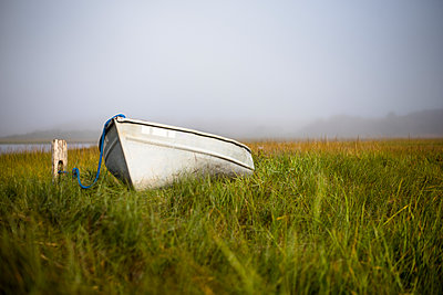 Rowboat sitting in grass in foggy Nantucket Marsh, Nantucket, Massachusetts, USA - p343m1543688 by Cate Brown