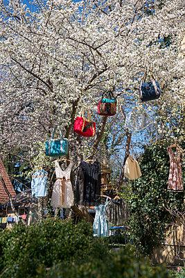 Gegenstände hängen an einem Baum - p1437m1502323 von Achim Bunz