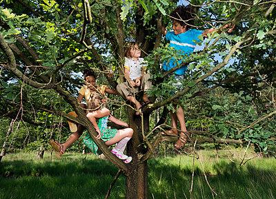 Kids play in the woods - p1132m1152747 by Mischa Keijser