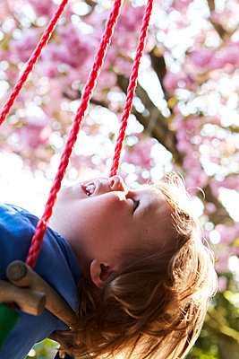 Little boy in a swing at spring - p1511m2223026 by artwall