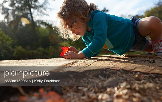 p669m1520616 von Kelly Davidson