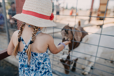 Girl wearing hat while feeding goat through fence - p1166m1534206 by Cavan Images