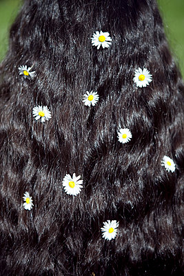 Black hair with daisies  - p1195m1195434 by Kathrin Brunnhofer