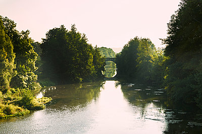 Canal with bridge and forest in summer - p1312m2258013 by Axel Killian