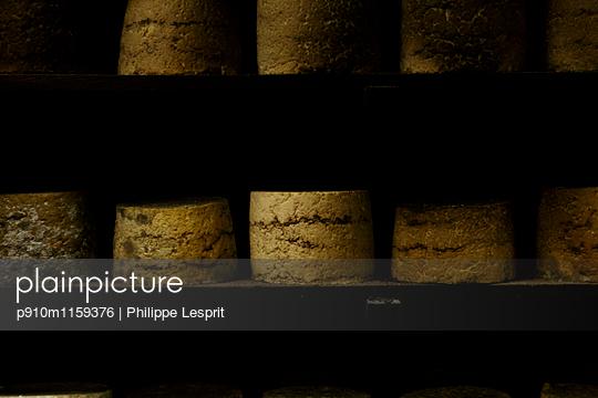 Reifungsprozess von Käselaiben in Käserei - p910m1159376 von Philippe Lesprit
