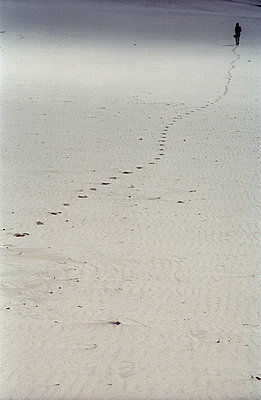 Footsteps in the Sand - p983m1540455 by Richard Dunkley