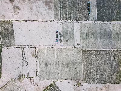 Indonesia, Sumbawa, Kertasari, seaweed plantation - p300m2103956 von Konstantin Trubavin