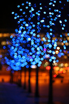 Blue Lights on Blurred Tree  - p1072m828849 by Boat Zhang