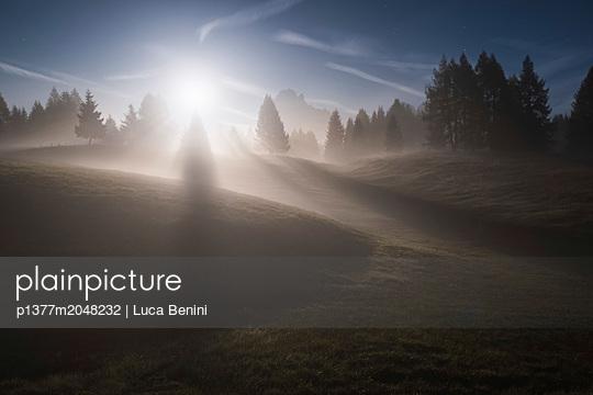 p1377m2048232 von Luca Benini
