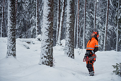Lumberjack in forest - p312m2139381 by Hans Berggren