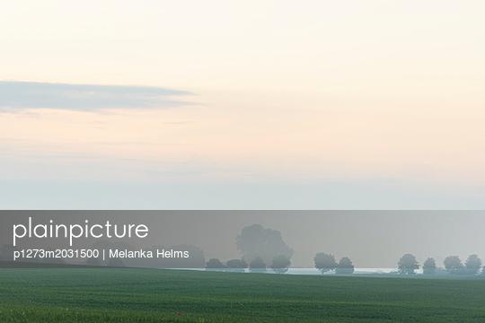 Morgenrot über einer Ackerlandschaft - p1273m2031500 von melanka