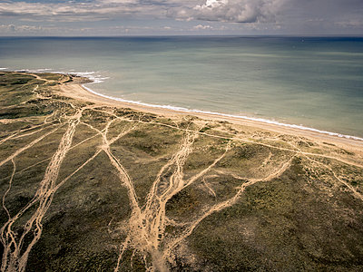 France, Sea and dunes - p1402m2291354 by Jerome Paressant