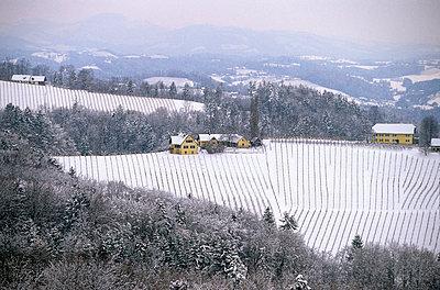 Winterlandschaft - p1205m1033049 von Toni Anzenberger