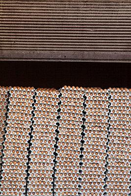 Eier in der Garage II - p1093m855418 von Sven Hagolani