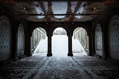 Black and White Central Park - p1290m1111100 by Fabien Courtitarat