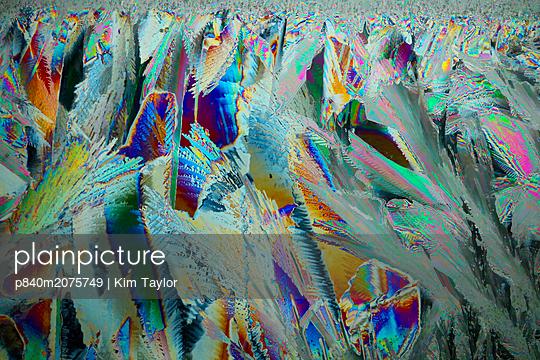 p840m2075749 von Kim Taylor