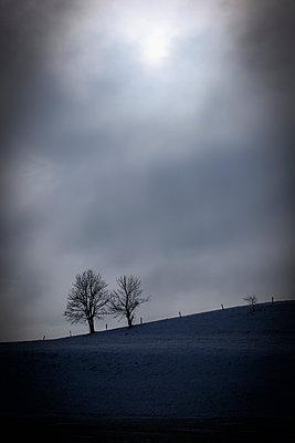 Hügellandschaft - p1149m1195416 von Yvonne Röder