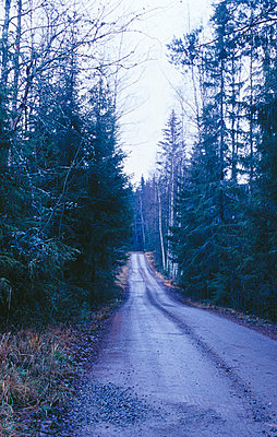 A narrow country road  - p3483634 by Tom Eklund