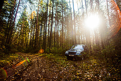 Sports utility vehicle in remote forest - p555m1412103 by Aleksander Rubtsov